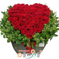 한결같은 사랑 장미 100송이_ 장미꽃바구니대형 기념일 생일 꽃선물 꽃배달 플라워몰