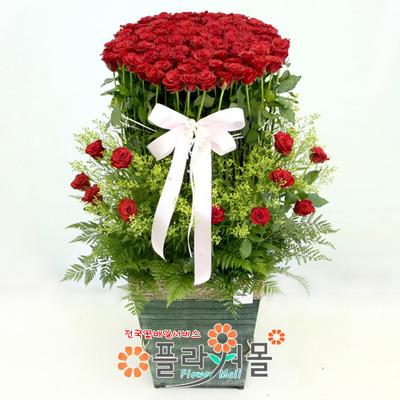 행복한 날 100송이 장미_ 대형장미꽃바구니 전국 기념일 꽃배달 플라워몰