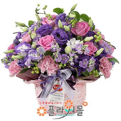 [당일배송]그대를 위해♡ 핑크장미 꽃바구니 꽃다발 생일 기념일 꽃선물_전국 당일꽃배달서비스_명품꽃배달[플라워몰]