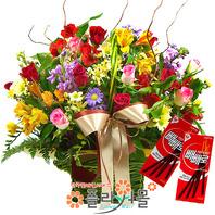 p-사랑이 꽃피는 계절(빼빼로무료)