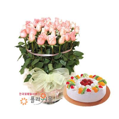 로망스 꽃바구니와케익