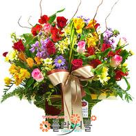 a-사랑이 꽃피는 계절