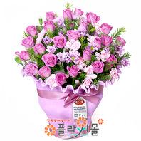 [당일배송]하늘반지♡ 핑크장미 꽃바구니 꽃다발 생일 기념일 꽃선물_전국 당일꽃배달서비스_명품꽃배달[플라워몰]