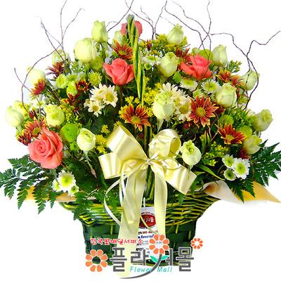 [당일배송]꽃밭에서♡ 장미 꽃바구니 꽃다발 생일 기념일 꽃선물_꽃배달당일배송_명품 전국꽃배달_[플라워몰]