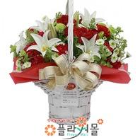 어버이날 카네이션 꽃바구니★pa-행복하세요★19년전통 명품꽃배달서비스[플라워몰]