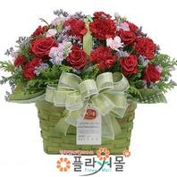 카네이션 꽃바구니★pa-그리운 마음~!★19년전통 명품꽃배달서비스[플라워몰]