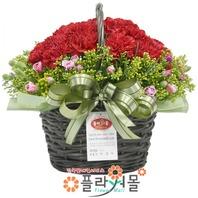 카네이션 꽃바구니★pa-카네이션바구니★19년전통 명품꽃배달서비스[플라워몰]