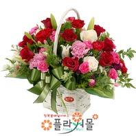 카네이션 꽃바구니★pa-건강하세요★19년전통 명품꽃배달서비스[플라워몰]
