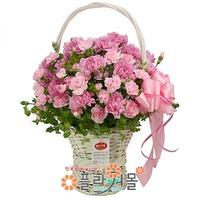 카네이션 꽃바구니★pa-그립습니다★19년전통 명품꽃배달서비스[플라워몰]