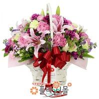 카네이션 꽃바구니★pa-마음으로보내는편지★19년전통 명품꽃배달서비스[플라워몰]
