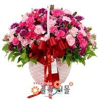 카네이션 꽃바구니★pa-보고싶은마음★19년전통 명품꽃배달서비스[플라워몰]